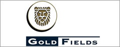 gold-fields